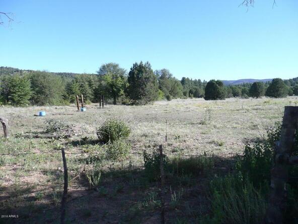 200 E. Cline Crossing, Young, AZ 85554 Photo 53