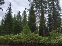 Home for sale: 314 Alpine Fir Rd., Lake Almanor, CA 96137