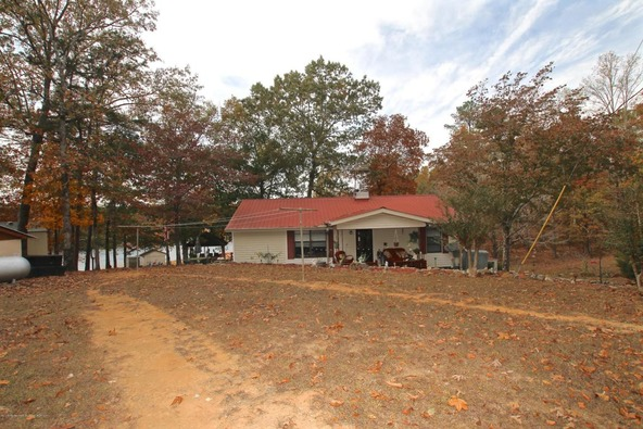 301 County Rd. 173, Crane Hill, AL 35053 Photo 46