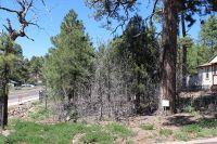 Home for sale: 31 Comfy Ct., Lakeside, AZ 85929