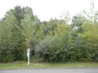 Home for sale: 32 Birchwood Ln., Woodbury, CT 06798