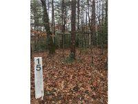 Home for sale: Lot 15 Shumont Estates Dr., Lake Lure, NC 28746
