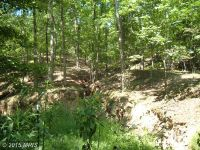 Home for sale: River Rd., Fisher, WV 26818