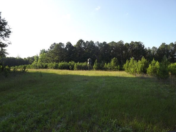732 Acre Hwy. 82, Eufaula, AL 36027 Photo 68