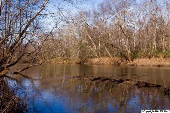 4733 Autumn Dusk Dr., Owens Cross Roads, AL 35763 Photo 24