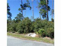 Home for sale: Luella Ave., Paisley, FL 32720
