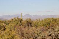 Home for sale: 13738 Brookhart Way, Scottsdale, AZ 85262