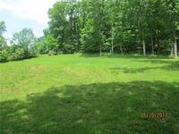 Home for sale: 0 Poplar Dr., Clendenin, WV 25045