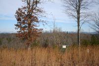 Home for sale: Lot 4 Spirit Bear Dr., Murphy, NC 28906