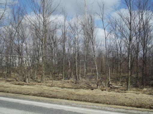 W. Cr 54, Tiffin, OH 44883 Photo 6