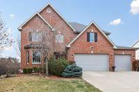 Home for sale: 6640 Ridge Rd., Darien, IL 60561