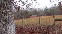 Home for sale: 12086 Cherokee Cnty Rd., Cloudland, GA 30731
