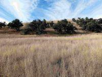 Home for sale: 13350 E. Singing Valley, Sonoita, AZ 85637