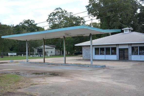 2590 Hwy. 84, Daleville, AL 36322 Photo 9
