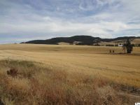 Home for sale: Tbd Loess Rd., Viola, ID 83872