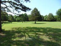 Home for sale: Farm Rd. 1197, Eagle Rock, MO 65641