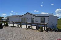 Home for sale: 309 Barbed Wire Ln., Ignacio, CO 81137