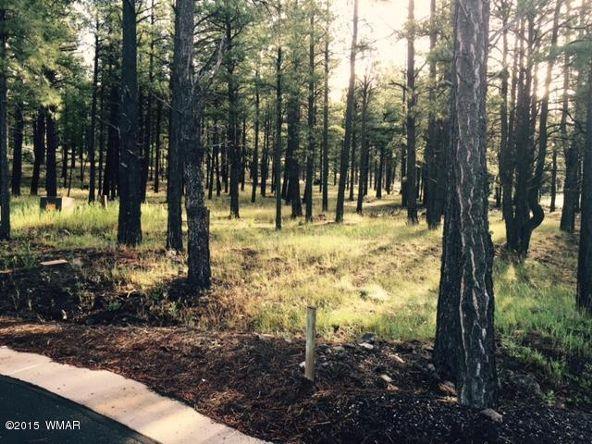 9580 Sierra Springs Way, Pinetop, AZ 85935 Photo 19