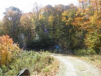 Home for sale: 117 Apalachee Way, Roan Mountain, TN 37687