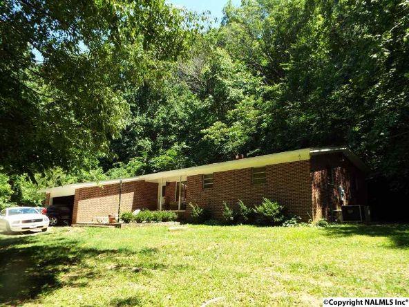 301 Manitou Avenue, Fort Payne, AL 35967 Photo 1