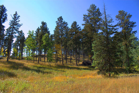 Lot 5, Powder House Trail, Lead, SD 57754 Photo 13