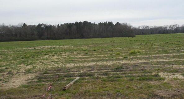 7 Acres Hardy Rd., Rehobeth, AL 36301 Photo 23