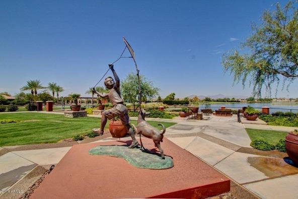 19732 N. Puffin Dr., Maricopa, AZ 85138 Photo 46