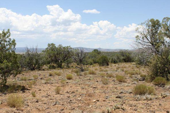 3 Stockman, Ash Fork, AZ 86320 Photo 9