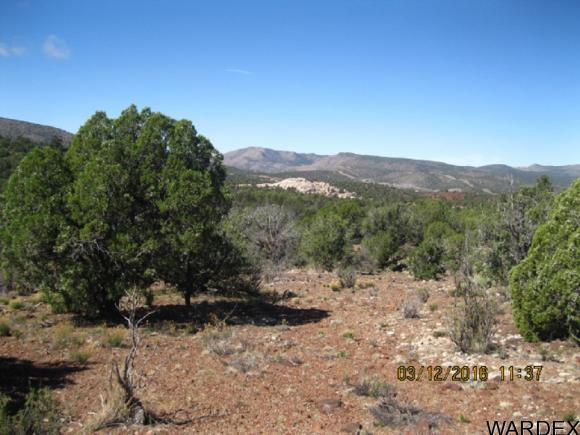 00 N. Willows Ranch Rd., Kingman, AZ 86401 Photo 13