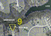 Home for sale: 7a231 Mesa C0urt, Apple River, IL 61001