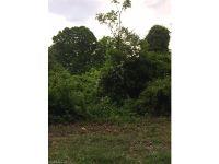 Home for sale: 16 Hidden Creek Dr., Arden, NC 28704
