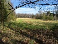 Home for sale: 0 Sisk Rd., Winchester, TN 37398