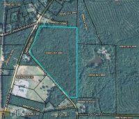 Home for sale: 0 Rock Creek Rd., Flovilla, GA 30216