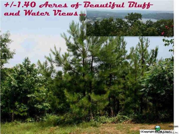 Ridgefield Cir., Guntersville, AL 35976 Photo 1