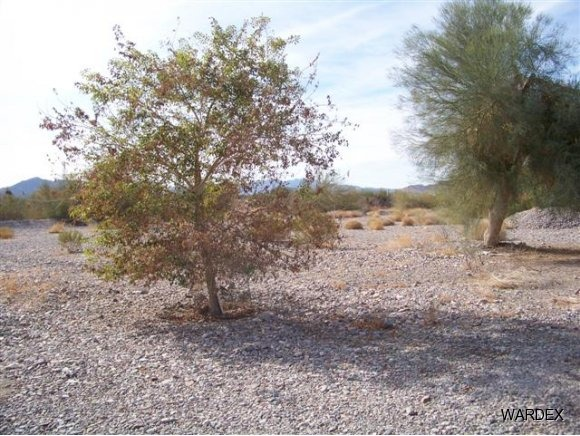 395 Flamingo Ln., Quartzsite, AZ 85346 Photo 1