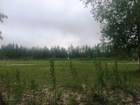 3478 Silverleaf Avenue, North Pole, AK 99705 Photo 6