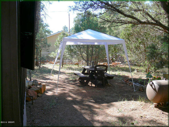 2174 Border Legion, Overgaard, AZ 85933 Photo 3