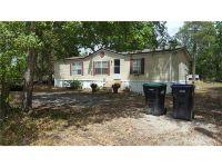 Home for sale: 1255 Saint Nicholas Avenue, Christmas, FL 32709