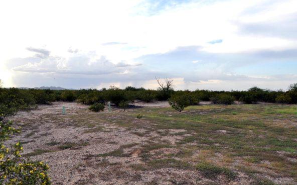 13087 N. Trico, Marana, AZ 85653 Photo 12