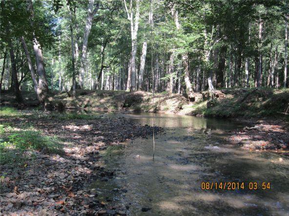 1865 County Rd. 99, Gaylesville, AL 35973 Photo 37
