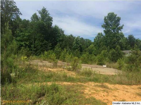 184 Hills Mine Ave., West Blocton, AL 35184 Photo 6