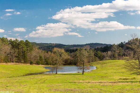 4541 Hwy. 88 West Hwy., Pine Ridge, AR 71961 Photo 15