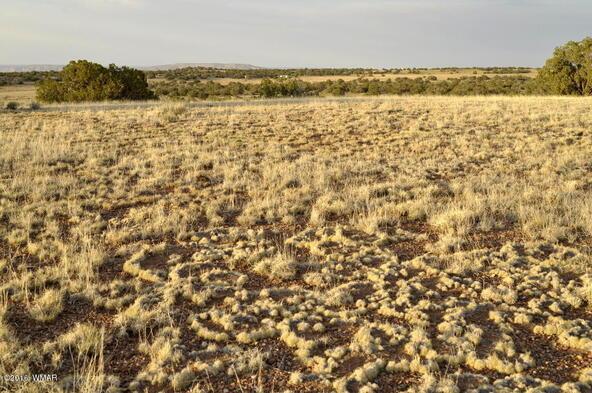297 Woodridge Ranch, Concho, AZ 85924 Photo 18
