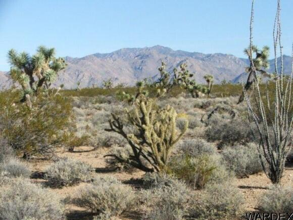 3529-C Arroyo Rd., Yucca, AZ 86438 Photo 11
