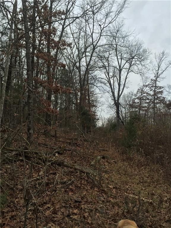 21354 Fire Tower Rd., Elkins, AR 72727 Photo 39