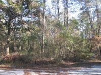 Home for sale: 0 Frank Rd., Sopchoppy, FL 32358