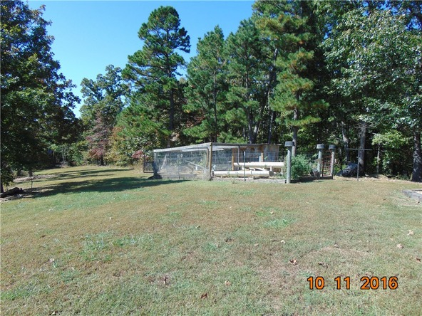 6786 County Rd. 501, Berryville, AR 72616 Photo 6