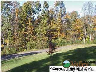 Creek Cir., Guntersville, AL 35976 Photo 1