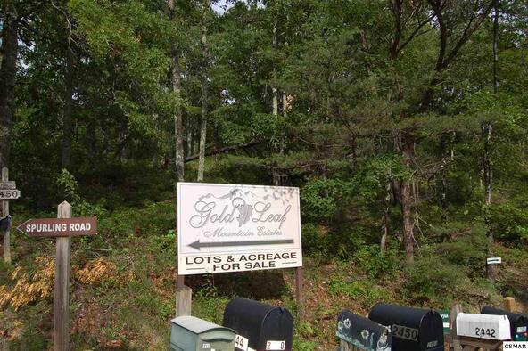Lot 86 Hatcher Mtn Rd., Sevierville, TN 37862 Photo 4