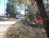 Home for sale: Passion Play Rd. & Parkway Rd, Eureka Springs, AR 72632